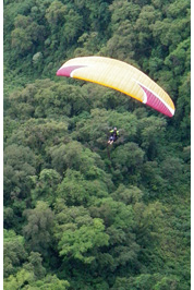 Paragliding above yungas :: Flying above jungle of Tucuman, Argentina