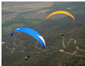 Paragliding above yungas :: Flying above forest road of Villa Nouges, Tucuman, Argentina